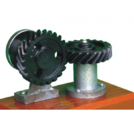90 ° Staggered Screw Gear